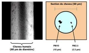 La taille d'une particule PM10 et PM 2,5 est de très loin inférieure au diamètre d'un cheveu humain