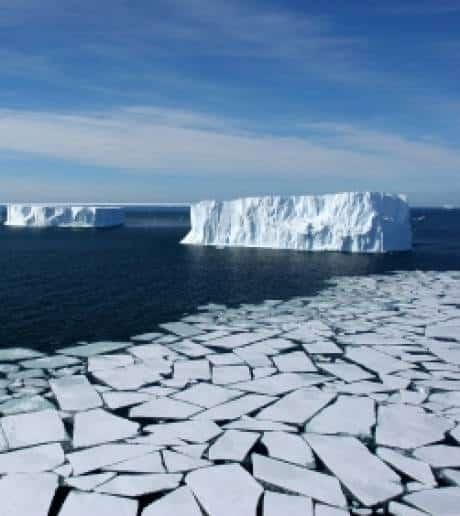 Politique et économie : le point sur le réchauffement climatique