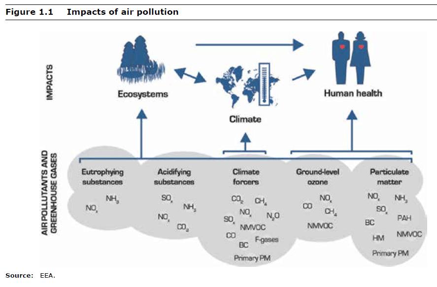 Petit cours sur la pollution de l'air par l'Union Européenne (en anglais)