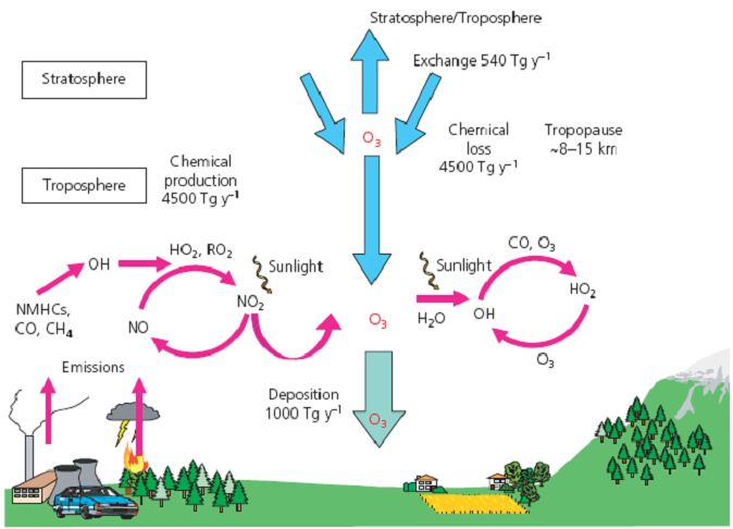 Schema formation ozone RSS 2008